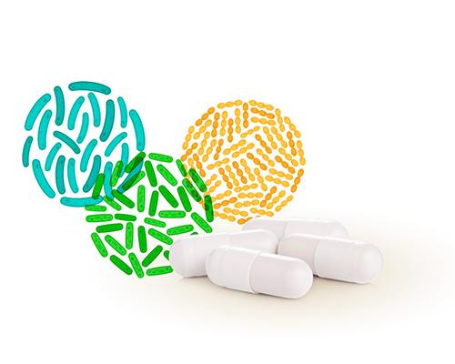 Mega-probiotikum